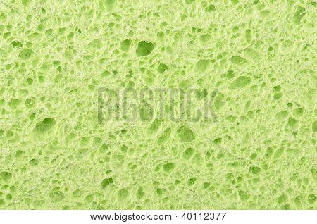 Close Up Cellulose Sponge Background