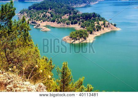 Pine Tree Island On The Lake(Turkey).