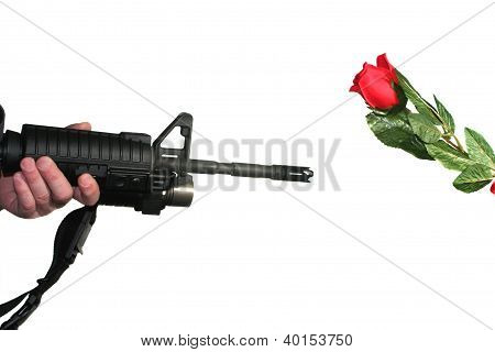 Rifle And A Rose