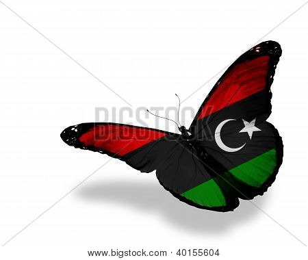 Libyan Flag Butterfly Flying, Isolated On White Background