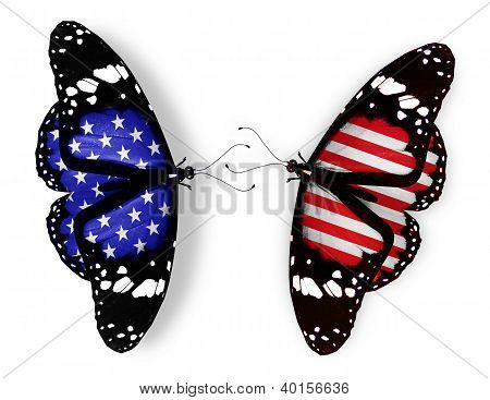 Two American Flag Butterflies, Isolated On White Background