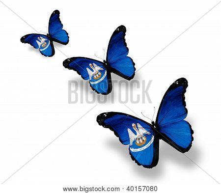 Three Louisiana Flag Butterflies, Isolated On White