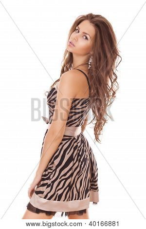 Woman With Beauty Long Brown Hair