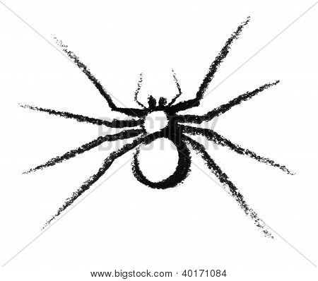 Bosquejado de la araña