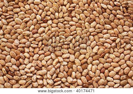 Soup Beans X