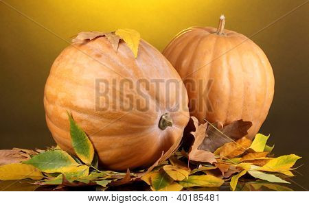 Two ripe orange pumpkins with yellow autumn leaves on yellow background
