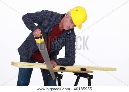 A mature carpenter sawing.
