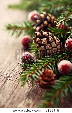 Close up of spruce twigs and pine cones for christmas