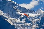 stock photo of sky diving  - Paragliding in swiss alps Jungfrau region - JPG