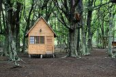 stock photo of tierra  - Wooden house in the forest - JPG