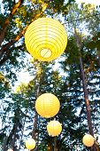 stock photo of wedding  - Yellow wedding decorations hang from the trees at a wedding ceremony and reception outdoors in Oregon - JPG