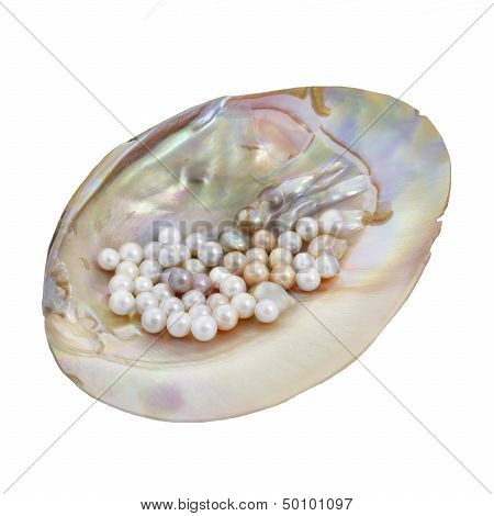 Pearls In Mother Of Pearl