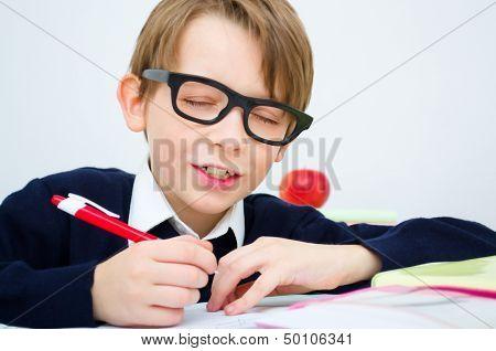 Schoolboy Writing Homework