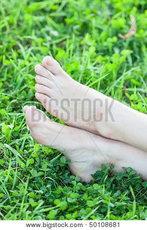 Bare Female Feet On Grass Vertical Frame