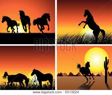 Horse Sunset Set