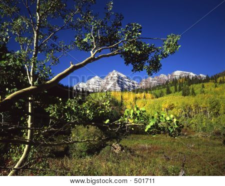 Maroon Bells & Aspen Branch