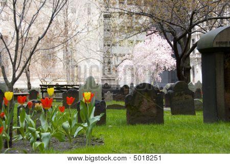 Urban Cemetery