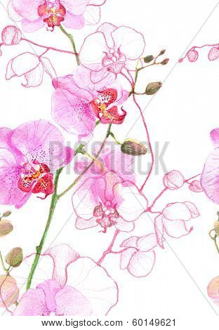 Watercolor seamless pink orchids pattern