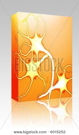 Nerve Cells Illustration Box Package