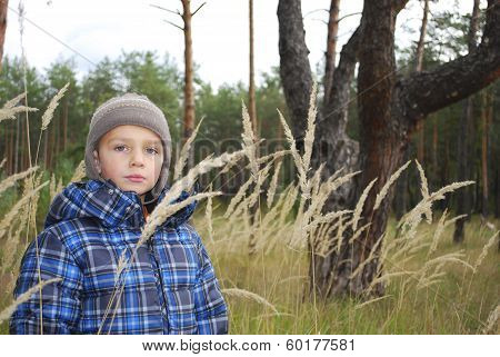 In The Forest, In The Tall Grass Is A Littlel Boy.