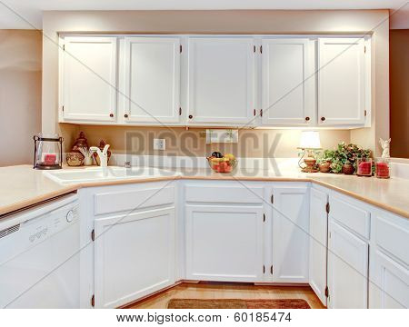 Bright Kitchen Room  Decor Idea