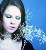 image of cold-shoulder  - Young woman with winter twig - JPG