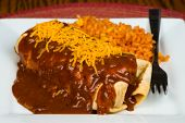 Enchilada with traditional sauce and Spanish rice