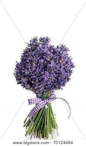 Bouquet Of Lavender Flowers Cut On White Background