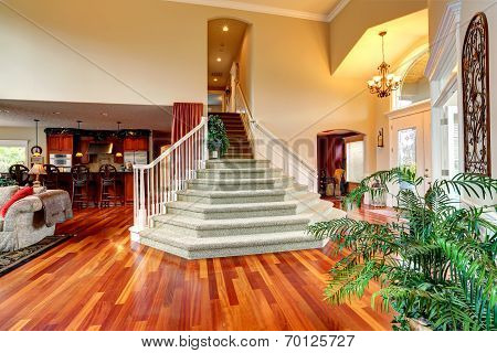 Luxury House Interior. Foyer With Beautiful Staircase