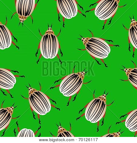 Colorado Potato Beetles Seamless Pattern