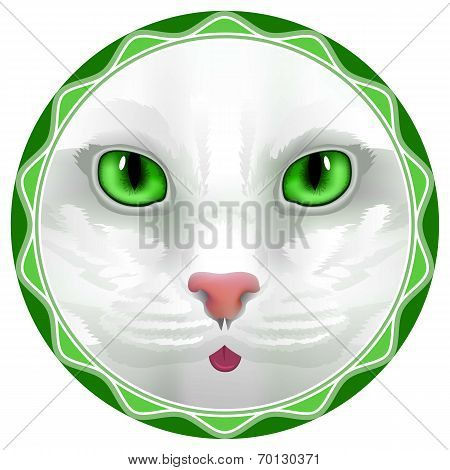 cat, face, eyes, vector, animal, cute, kitten, bow, hair, facial, portrait,