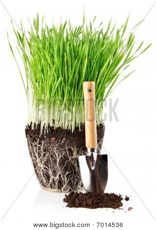 Green Grass With Roots In Ground And Shovel Tool