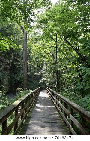 Hayden Falls Pathway