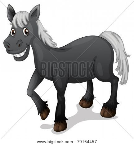 Illustration of a black horse