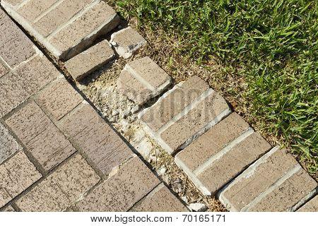 Close Up Of A Brick Walkway Edge In Need Of Repair