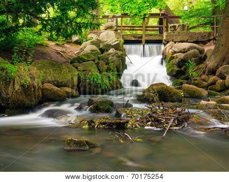 Waterfall In Woods Green Forest. Stream In Oliva Park Gdansk.