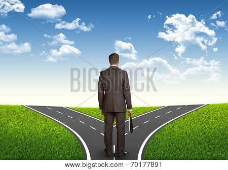Businessman with briefcase on a road fork