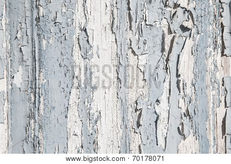 Old Rustic Blue And Grey Wood Background With Peeled Color.