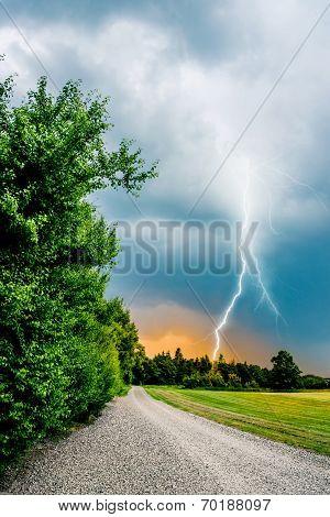 Thunder And Lightning Hits Trees