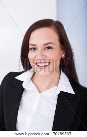 Portrait Of Welldressed Young Businesswoman