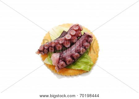 Octopus Appetiser Isolated Over A White Background