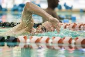 foto of lap  - older competitive adult swimming laps in pool - JPG