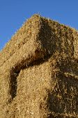pic of haystacks  - Traditional rectangle hay bales forming a haystack.