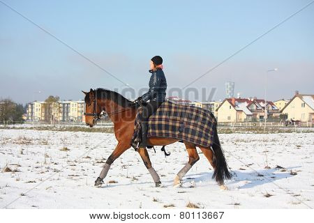 Teenager Girl Riding Bay Horse In Winter