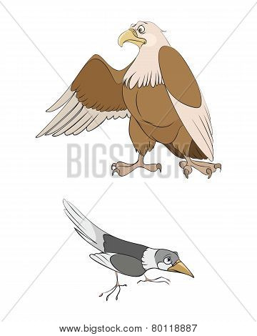 Magpie And Eagle
