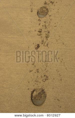 Ballybunion Beach Sand Horses Hoofprints