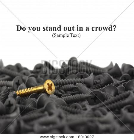 Do You Stand Out In A Crowd?  Macro Of One Brass Screw In A Pile Of Black Screws Isolated On White W