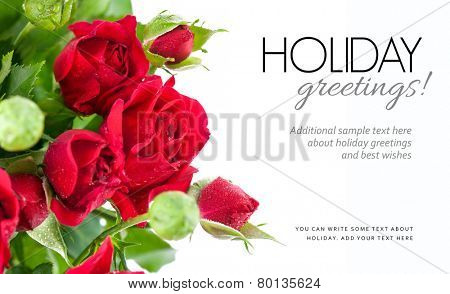 Bunch red roses greeting card. Isolated on white background