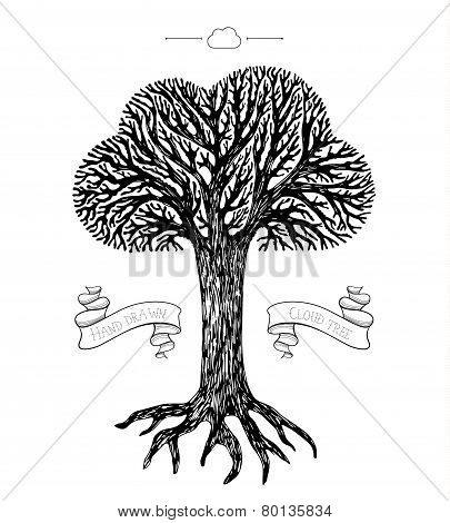 Tree crown in the shape of cloud