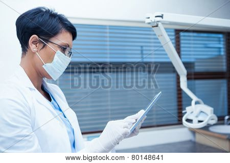 Concentrated female dentist in surgical mask using digital tablet